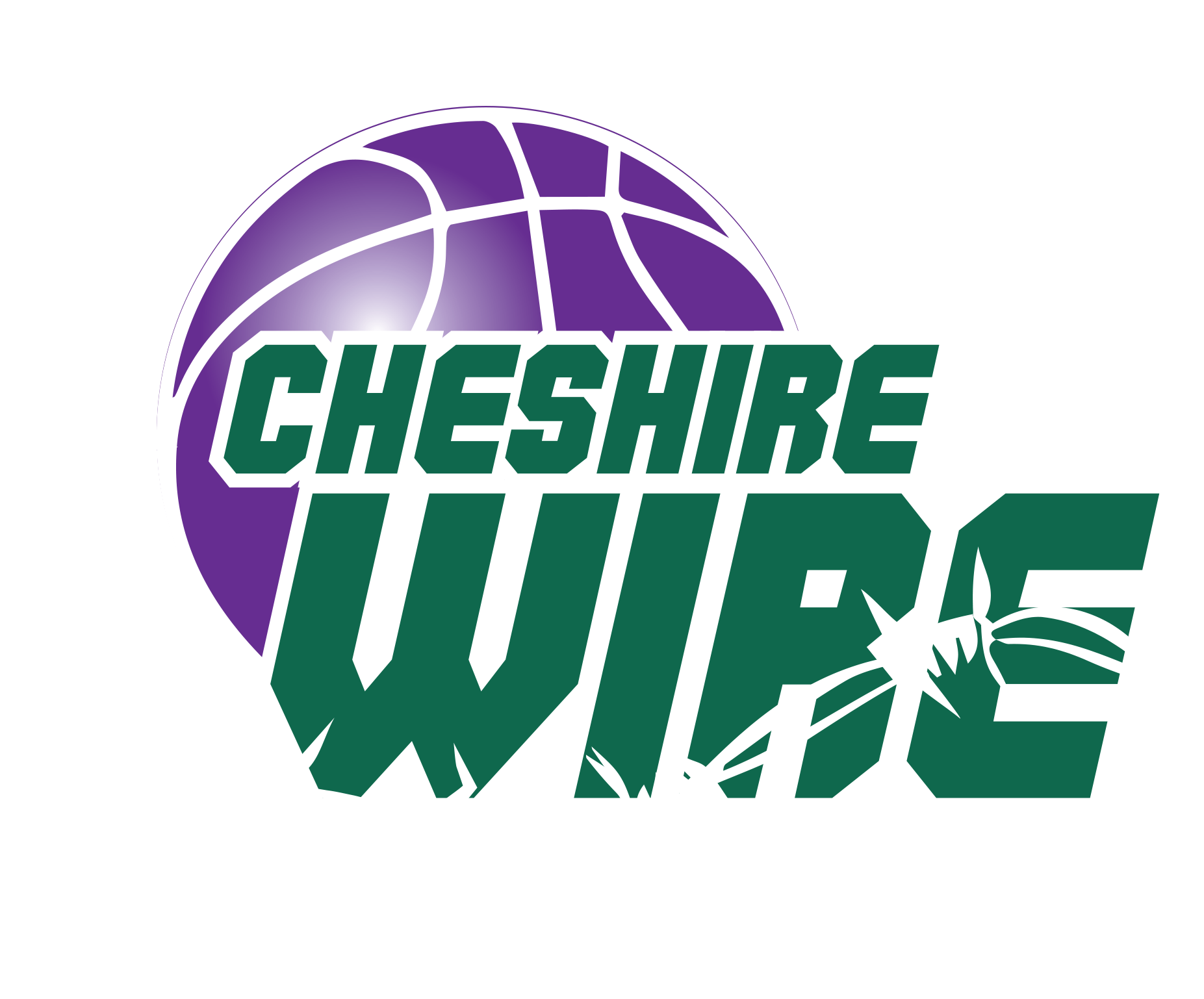 Image result for cheshire wire logo